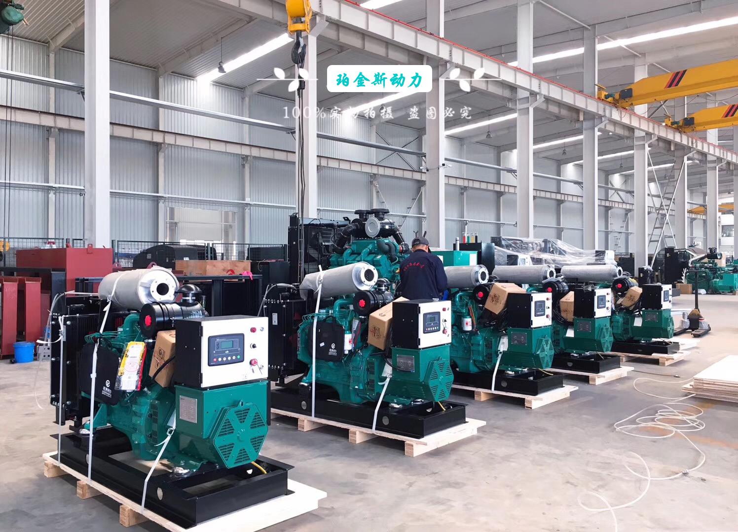 资讯-小型柴油发电机组的检验方法